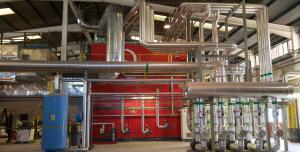 Biomasa y geotermia, un gran potencial desaprovechado