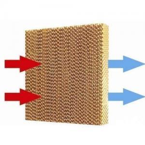 Adiós al aire acondicionado: inventan un papel refrigerador que enfría las casas sin usar electricidad